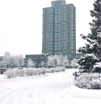 Brookstreet Hotel - Winter